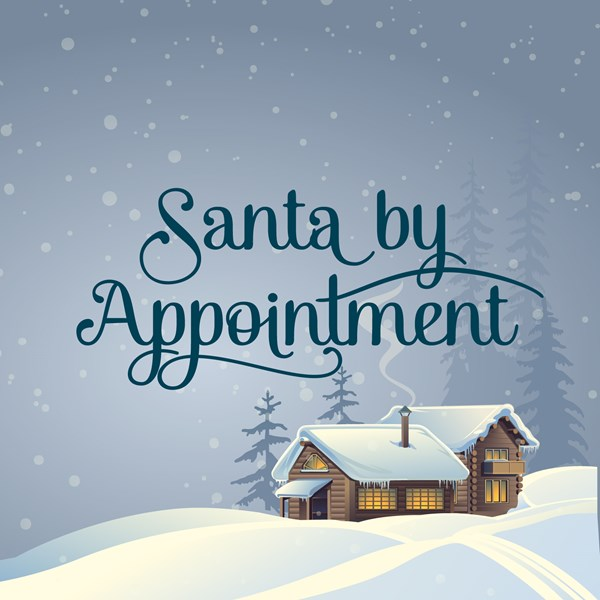 Santa By Appointment